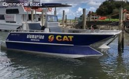 6 mtr G-Cat (people mover)